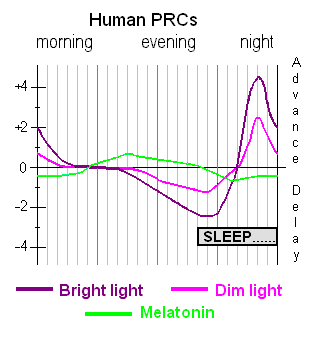 Phase response curves for light and for melatonin administration