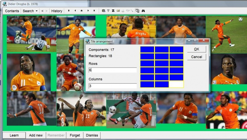 SuperMemo: Tiling Didier Drogba pictures with component tiling assistance