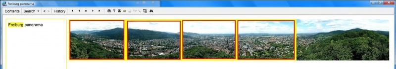 SuperMemo: The original picture of the Freiburg panorama (too large to view its details) from which 4 picture extracts (marked with bright yellow-red rectangles) have been produced