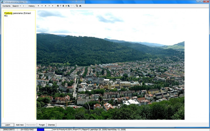 SuperMemo: The 2nd extract produced from the original picture of the Freiburg panorama (now small enough to view its details)